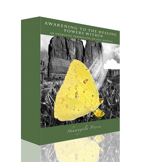 Self Healing ebook