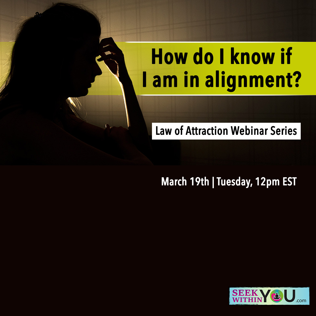 Webinar Law of Attraction and Alignment