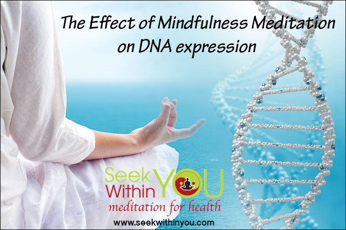 Effects of Mindfulness Meditation on your DNA Expression